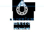 rareview-macro-logo
