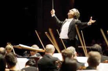 symphony marketsmuse