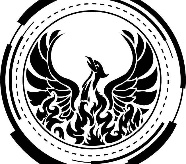 phoenix-otc-pink-sheet-rehabilitation