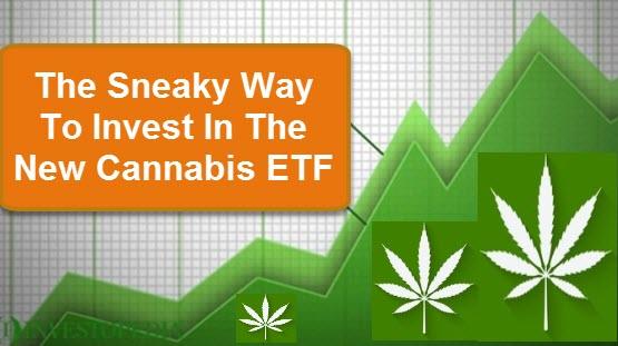 cannabis etf marketsmuse